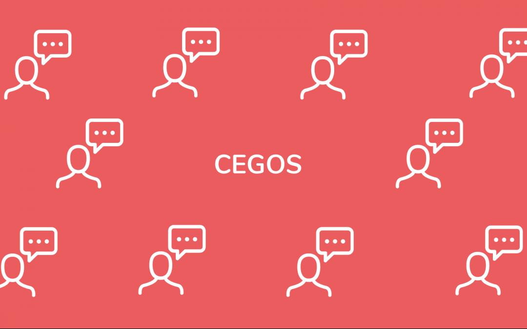 Cegos & les formations en ligne video topovideo
