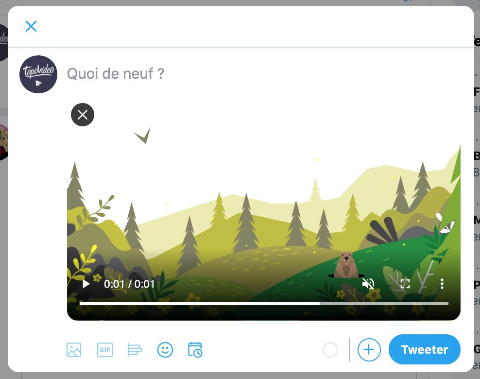 exemple-de-tweet-avec-une-video-native